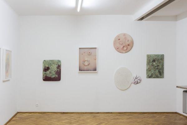 Paweł Matyszewski - Bliss & Harm